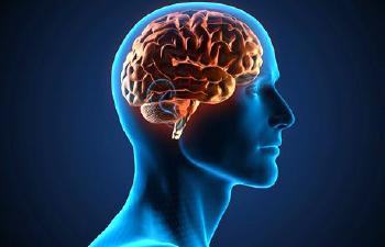 Mindfulness: Efectos de la Meditación a nivel cerebral
